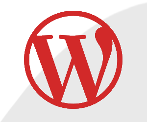 Customize Your WordPress Site